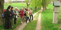 Pilgern in Oberschwaben (Foto: Zembrot)