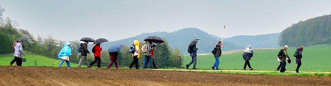Die Pilger auf dem Weg: der Dauerregen war eine Herausforderung (Foto: Bittner)