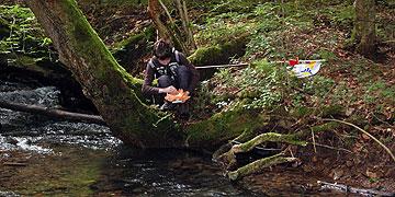 Erfahrung unterwegs: Die Sorgen wegschwimmen lassen (Foto: Brehm)