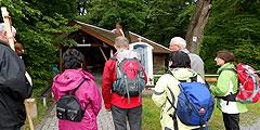 Auf dem Marien- und Wallfahrtsweg (Foto: Karle)