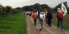 Pilger aus dem Erzbistum Freiburg auf dem Pilgerweg nach Schönstatt (Foto: Wehrle)