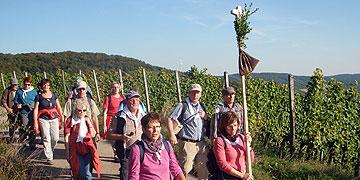 Im flotten Schritt durch fränkische Weinberge (Foto: Fella)