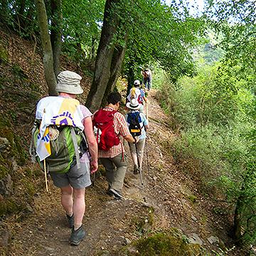 """Auf dem Weg """"für"""" jemanden unterwegs sein (Foto: Pilgerwege-Schoenstatt)"""