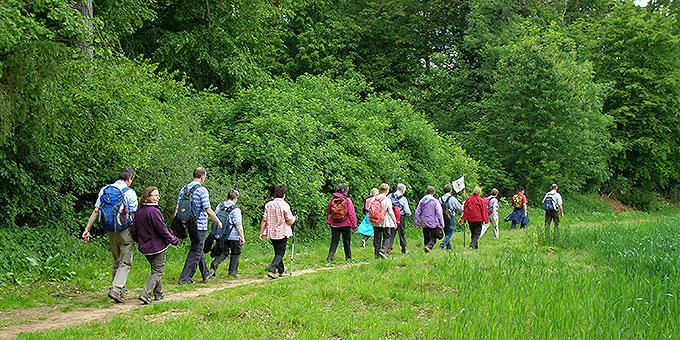 Wandern - von Schönstatt aus  (Foto: Brück)