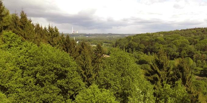 Auf dem Hermannsweg über den Kamm des Teutoburger Waldes (Foto: Schulte)