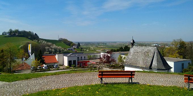 Das Schönstatt-Zentrum Oberkirch hat eine herrliche Lage umgeben von Weinbergen und mit Blick auf das Rheintal (Foto: Sch.Z. Oberkirch)