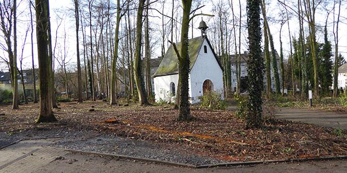 Das Wäldchen rund ums Heiligtum wird aufgeräumt (Foto: Heister)