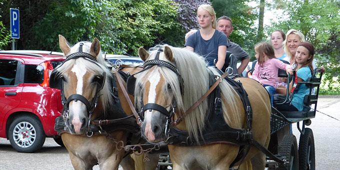 Kutschfahrten gehörten auch zum Festprogramm (Foto: H. Schroeder)