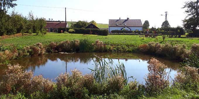 Am Dorfweiher von Prossitten. Im Hintergrund links das Haus Engling und auf dem Hügel dahinter vielleicht er Platz für ein neues Schönstatt-Heiligtum (Foto: Löhr