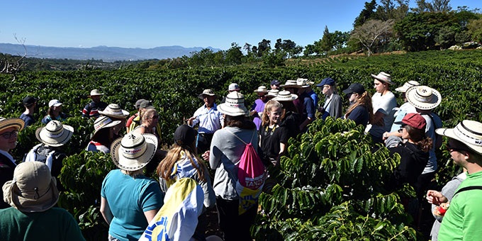 Kennenlernen einer Café-Plantage (Foto: Ula Cyganik)