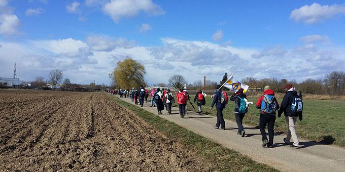 Pilger unterwegs nach Marienthal (Foto: Wehrle)