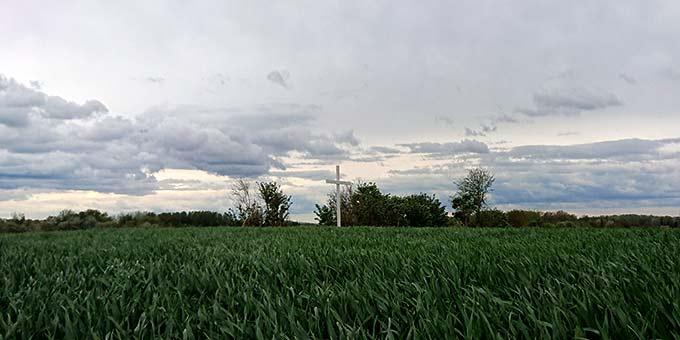 Die Cambraifahrer gehen den Letzten Weg Josef Englings nach. Heute erinnert ein Kreuz an diesen Weg (Foto: Frank Blumers)