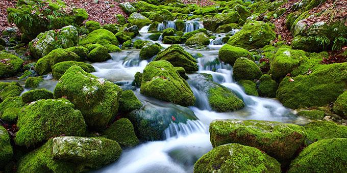Ströme von lebendigem Wasser (Foto: Leandro Stefani, Pixabay.com)