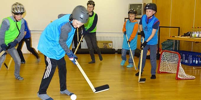 Spiel auf glattem Parkett - Eishockey alternativ (Foto: Andreas Mergler)