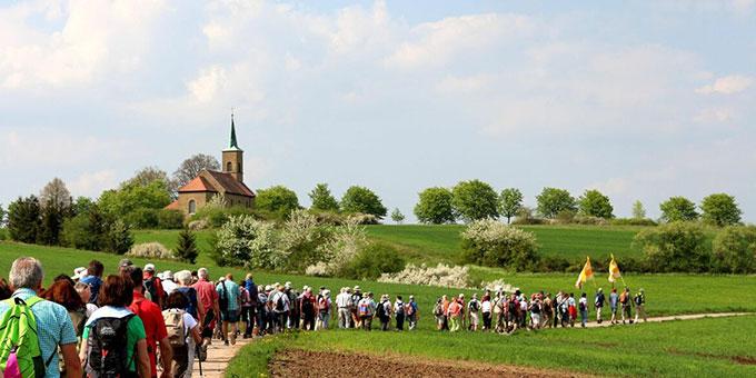 Pilger im Frühling 2019 auf dem Fränkischen Marienweg (Foto: www.fraenkischer-marienweg.de)