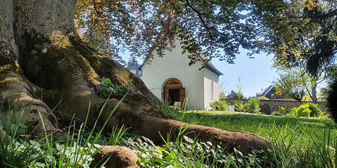 Das Trierer Schönstatt-Heiligtum steht in einem Park mit wunderschönen alten Bäumen (Foto: Schönstattzentrum Trier)