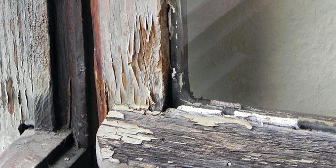 """Mit einer """"Fensterkampagne"""" kann dem Bundesheim geholfen werden (Foto: Philipps)"""