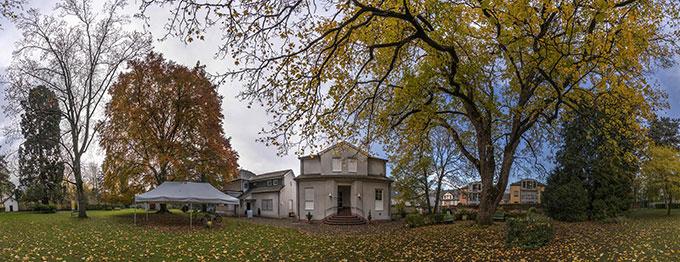 Die Feier zur Grafitto-Einweihung findet statt im Park des Schönstattzentrums Trier, unter uralten Bäumen (Foto: Michael Scholer)