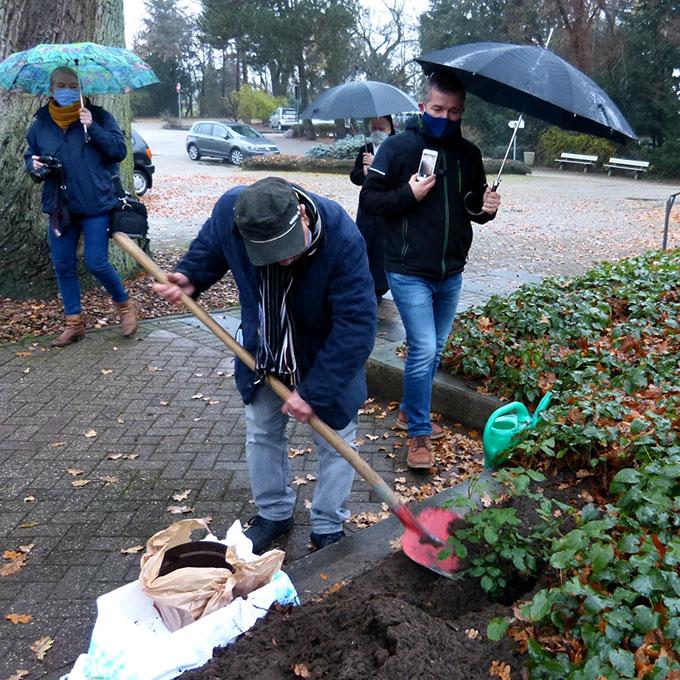 """Norman Sinclair pflanzt die """"Pilgerrose"""" beim Schönstatt-Heiligtum in Borken(Foto: Hechinger)"""