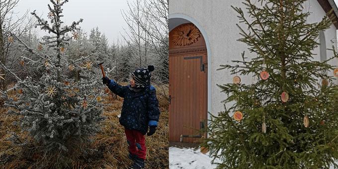 """Links: eine """"Sternestation"""" auf dem Advents- und Weihnachtsweg. Rechts: Über 200 solcher kleiner Baumscheiben wurden von den Teilnehmern selbst gestaltet (Foto: Pongratz)"""