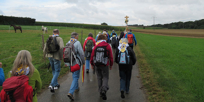 Auf dem Pilgerweg in Richtung Rohrdorf (Foto: Pilgertag)
