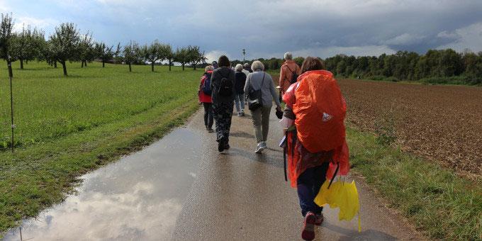 Eine Pilgergruppe unterwegs (Foto: Metzler)